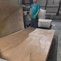 Okoume compensado de madeira comercial com BB/CC grau
