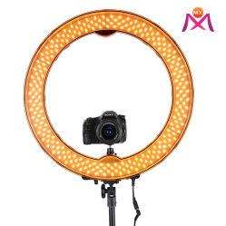 """2020 """" vult de Video van de Make-up van de Schoonheid van de Tribune van Driepoot Nieuwe 10 van de LEIDENE van de Cirkel USB het Licht Ring van Selfie"""