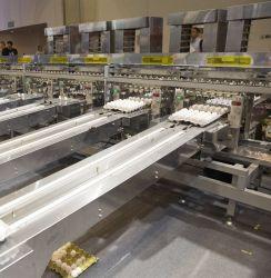 卵の養鶏場のための卵の等級分けの機械及び卵の等級分け機械