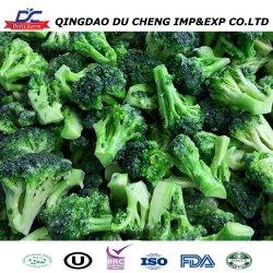La BRC ISO HACCP a granel frescos de brócoli congelado baratos brócoli