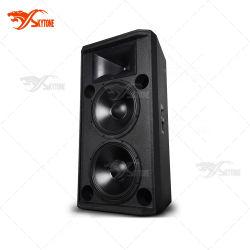 "Skytone Stx825双方向の15 "" DJの最上質のプロ可聴周波スピーカー"