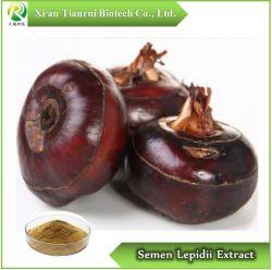 El semen Lepidii /Pepperweed Extracto de semilla de semillas/Lepidium, Polvo10: 1