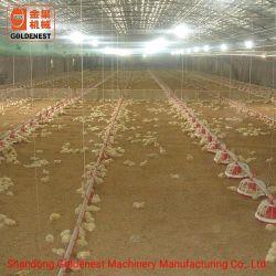 China Goldenest granja avícola completa de equipos/parrilla aperos de labranza
