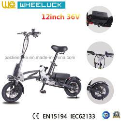 Nouveau 12 pouces en aluminium et châssis en alliage Magenesium vélo électrique