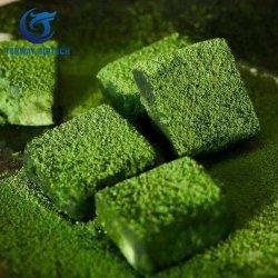 Natürliches grüner Tee-Auszug-Puder Matcha Tee-Puder zu Massenmenge-niedrigem Preis