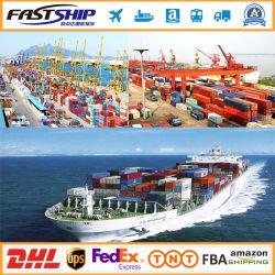 La Chine en Amérique du Sud pour le transport maritime international de la logistique du fret Service