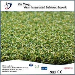 بوابة سجاد من العشب الصناعي 12mm 58800st PE