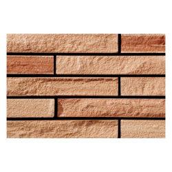 Brictec azulejos de tijolos de barro decorativos grossista e tijolo para a construção de paredes e pavimentos