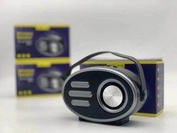 Altoparlante all'ingrosso Rgk-216 di Bluetooth, con TF/USB/FM/Aux/Handsfree/Handle