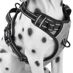 De weerspiegelende Toebehoren van het Huisdier van de Producten van het Huisdier van de Uitrusting van de Hond van het Huisdier van de Veiligheid