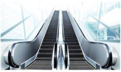 Transportador Travelator Passageiro Syney Movendo Calçada Passarela China Fabricação a escada rolante