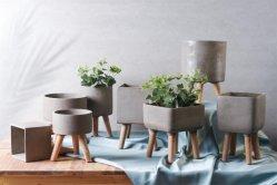 熱い販売の家の装飾小さいプランターの花の鍋 / 植物の鍋