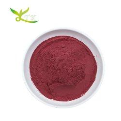 Comida saudável natural da beterraba vermelha de Pó de raiz