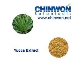 Medicina de la cría de Yucca schidigera Sarsaponin el 60%