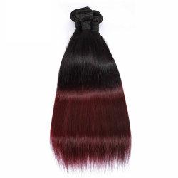 Wendyhair Natural Perian الشعر البني غير المعالج للنساء السود