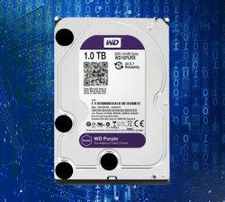 """Festplattenlaufwerk 1tb HDD des CCTV-Systems-3.5 """" für CCTV-Schreiber Poe 2MP 3MP 5MP Ahd DVR NVR"""