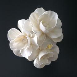 Sola hölzerne trockene Blume