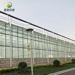 Heißer Verkauf Smart Glass Greenhouse mit hydroponischen Wachstumssystemen