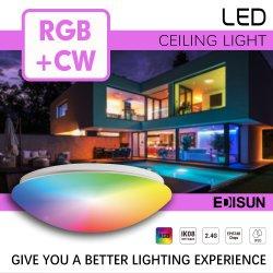 Dekorative Beleuchtung für Zuhause Tuya WiFi Smart LED Deckenleuchte