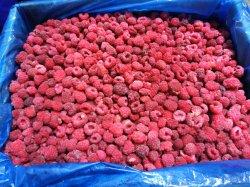 Производство замороженных Furits, замороженных IQF малины, замороженные фрукты, замороженные продукты, ингредиент фруктового сока или пюре