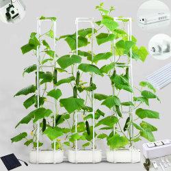 2021 Nuevo diseño inteligente de gran potencia doble interior/exterior Hidroponía Pepino Tomate el equipo de la luz solar jardín