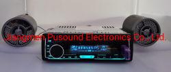 リモート・コントロールUSB Bluetoothが付いているマルチメディア車の音響設備エムピー・スリーDVD