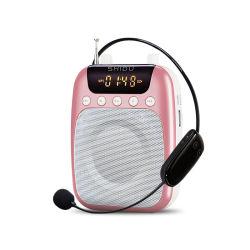Shidu S318UHF drahtloses Mikrofon mit FM Radio/Recroding Funktion