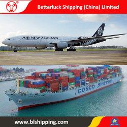 LCL die van China aan Overzeese van Nieuw Zeeland Auckland Vracht verschepen