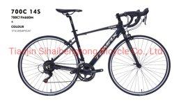 Racing Bike 700c Steel Road aluguer