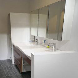 洗面所のシャワーの浴室が付いているモジュラープレハブ20FT 40FTの容器の家
