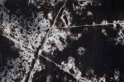 Полы в помещении Veined Calacatta черного цвета белый кварцевый камень