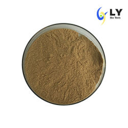 Les polyphénols naturelles Longyu Echinacea purpurea Extract en poudre