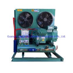 20 HP refrigerazione di alta qualità Congelatore per celle frigorifere condensazione raffreddata ad aria Unità