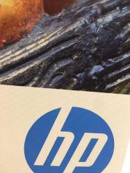 Katoenen van Inkjet het Zuivere Canvas van de Olie 380g voor de Inkt van de Kleurstof/van het Pigment