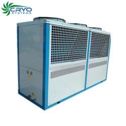 Холодильное оборудование - Copeland, утвержденном CE компрессора системы охлаждения охладителя системы для установки в стойку для хранения
