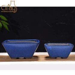 De mooie Vierkante Verglaasde Purpere Pot van de Bonsai van de Klei (een Reeks van 2)