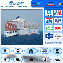 シンセンの信頼できる海の発送取扱店、中国からのHelsinnki&Kotkaに出荷する海