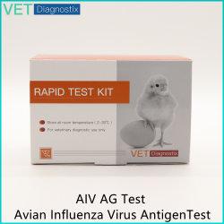 조류 독감 바이러스 항원 가금류 Aiv 수의과 진단 테스트