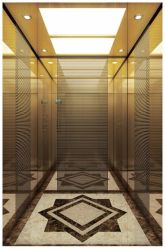 Lift van de Lift van de Passagier van de Observatie van de Lading van het Huis van Vvvf de Panoramische Woon