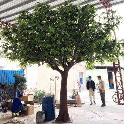 Grande grande di olivo artificiale della varia di figura decorazione dell'interno della festa nuziale da vendere