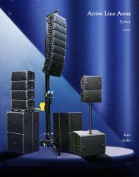 Het dubbele Systeem van 12 van de Duim Actieve van de Lijn Sprekers van de Serie Audio voor Binnen Openlucht Lang Overleg werpt Groot Formaat