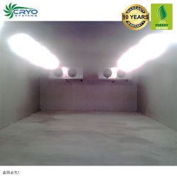 ポーク脂肪質の農場の鶏は冷房装置モジュラーCoolroomの低温貯蔵2006の完全な歩行に卵を投げつける