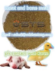 마초를 위한 단백질 분말 고기와 뼈 식사