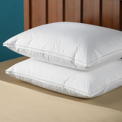 L'anatra dell'hotel di prezzi di fabbrica giù mette le piume al cuscino