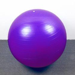 شعبيّة لياقة نظام يوغا كرة مع [55كم] حجم و [600ويغت] حجم