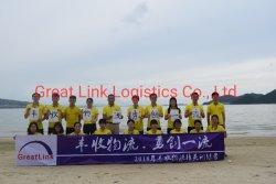China Seafreight aan Santo Domingo Dominica van de Dienst Shenzhen/Guangzhou FCL/LCL