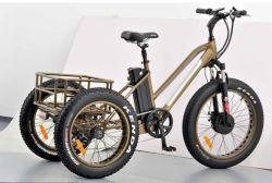 Fetter Gummireifen-elektrisches Dreirad für Mann mit Leistungs-und Doppelt-Scheibenbremse Mz-004