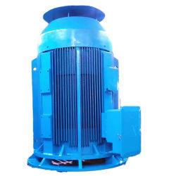 75HP Vhs van de Schacht van CEI NEMA de Standaard Verticale Holle Motor van de Pomp