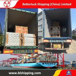 LCL die van China aan de Vracht van de Verenigde Staten van Amerika verscheept