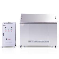 Nettoyeur ultrasonique industriel professionnel pour les pièces métalliques
